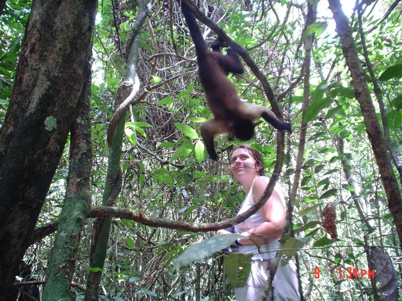 """Noëlle Gunst trying to maintain her composure and collect behavioral data while a brown capuchin monkey (""""Ernesto"""") is fooling around (Raleighvallen NP, Suriname, June 2003)"""