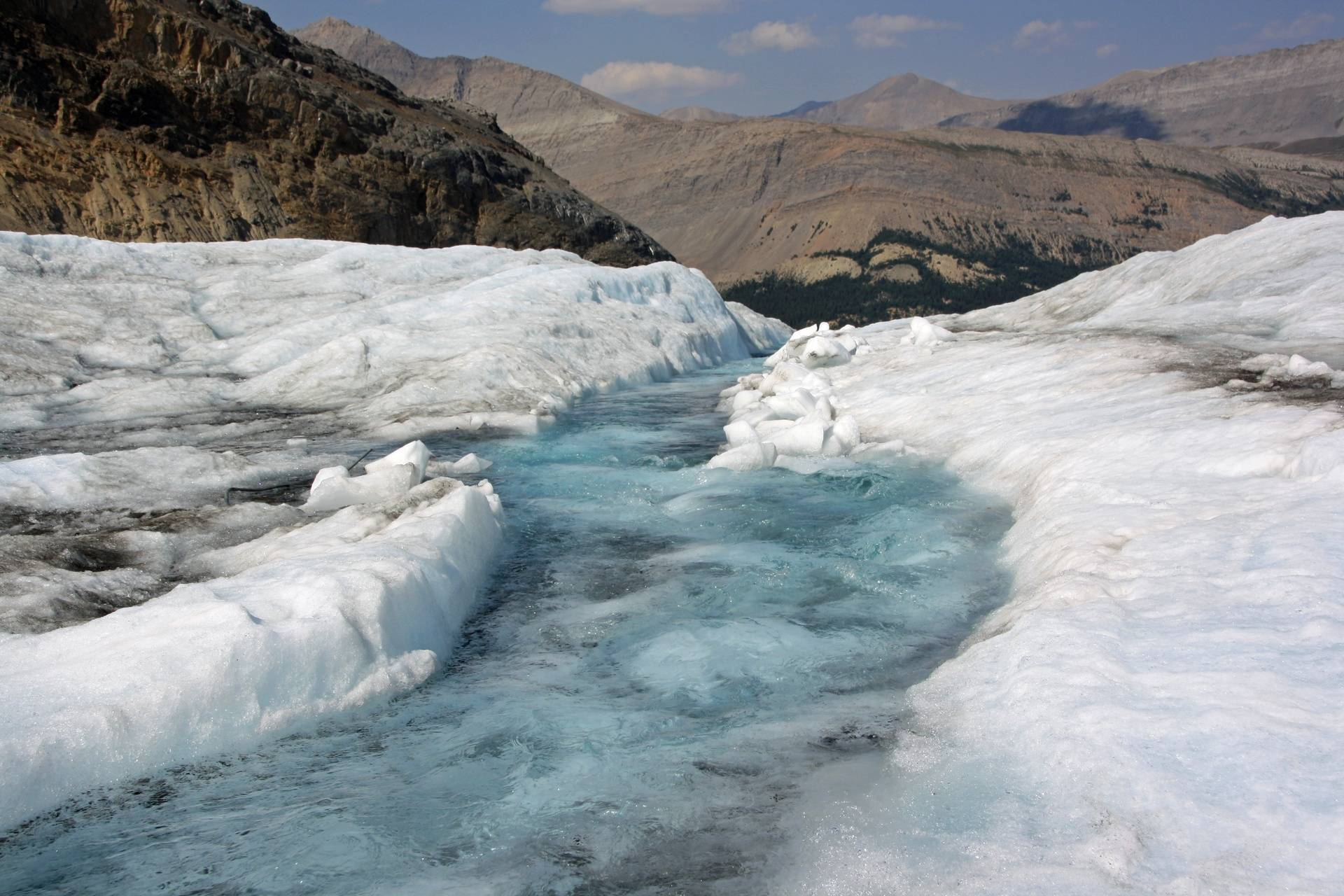 Stream from melt on Athabasca glacier