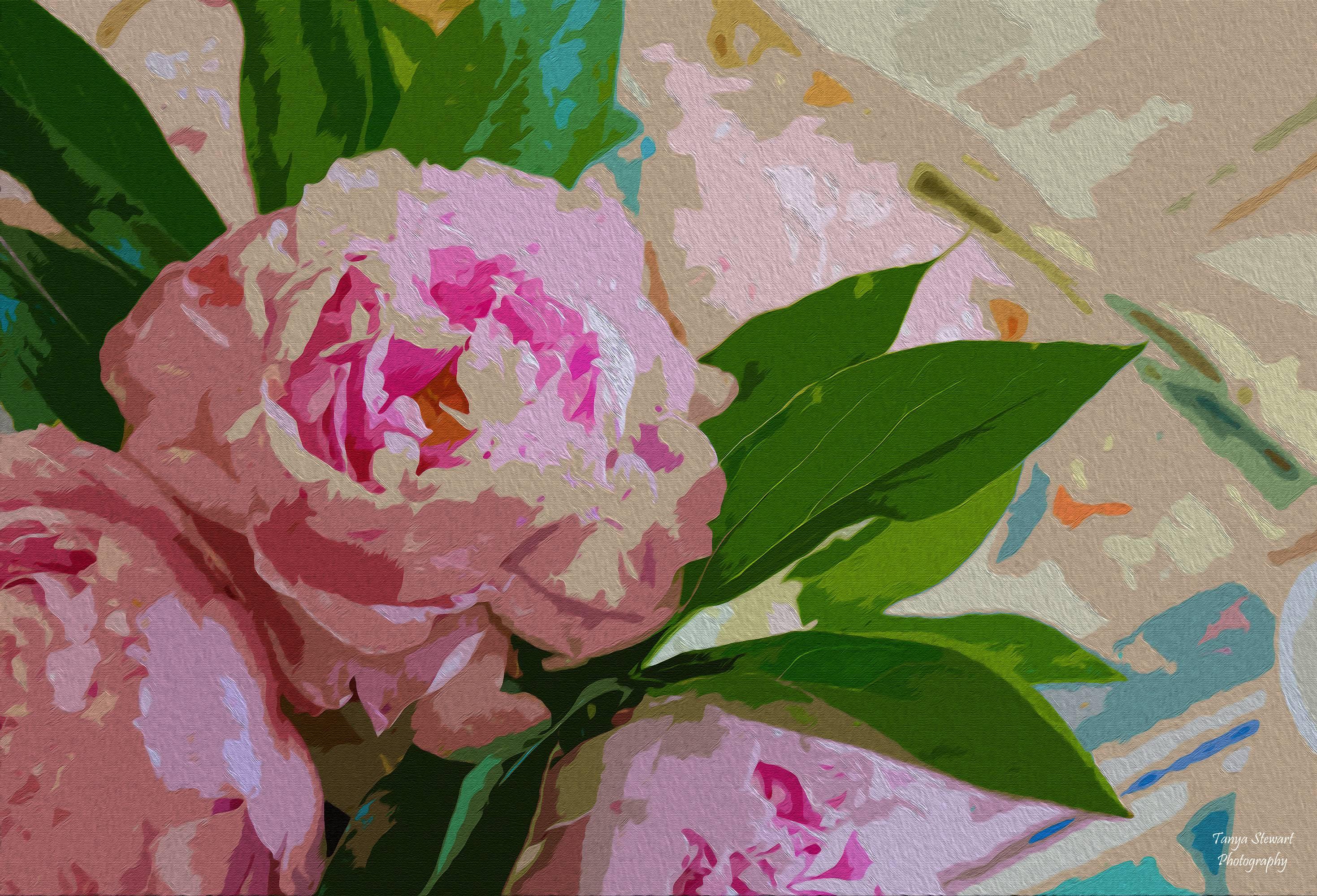 Peonies Oil Painting
