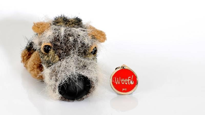 Scruffy & Red Woof