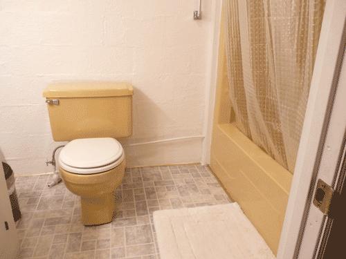 Bathroom (in basement)