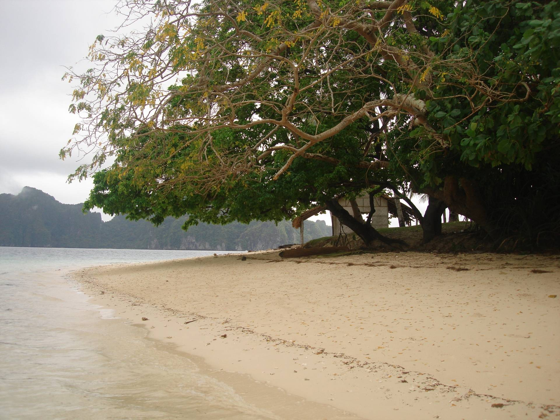 One of the many islands in El Nido