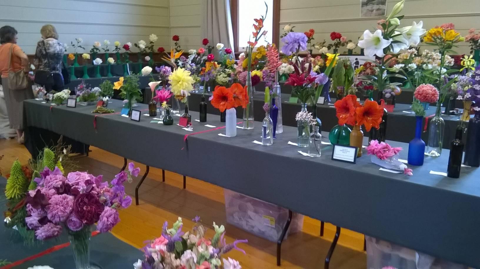 Rose & Flower Show 2015