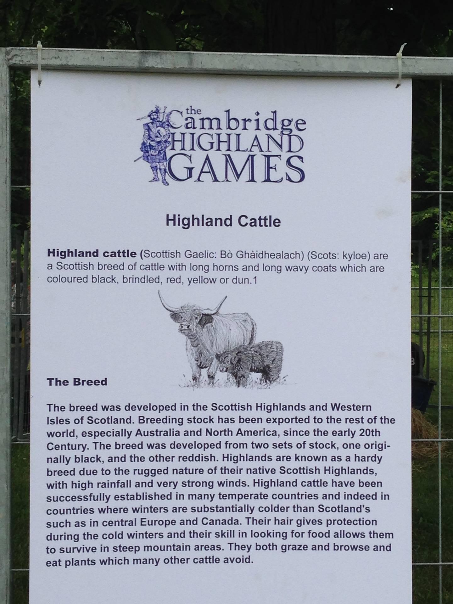Cambridge Highland Games 2014