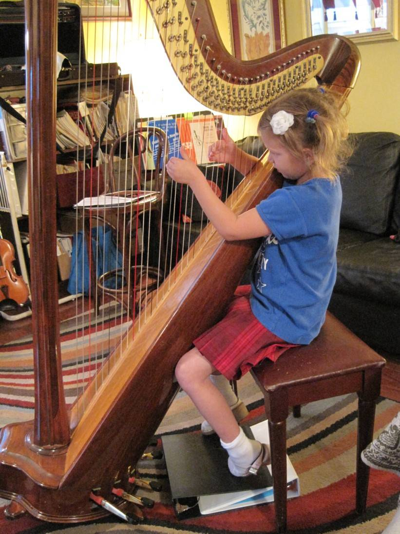 Young harp player