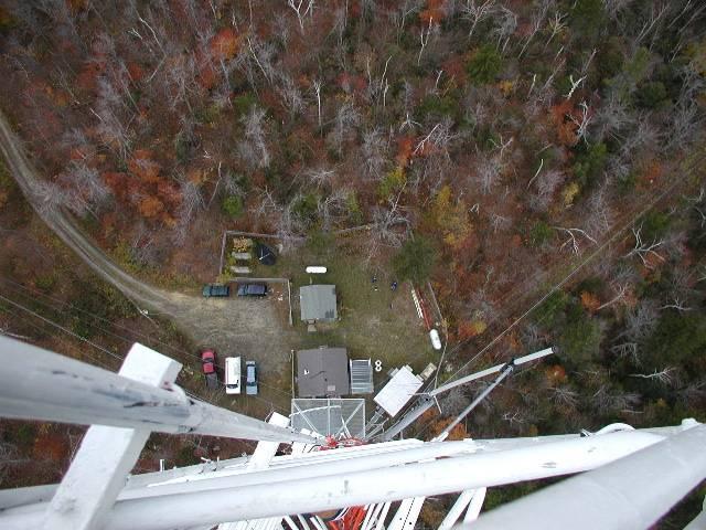 Looking down on Moose