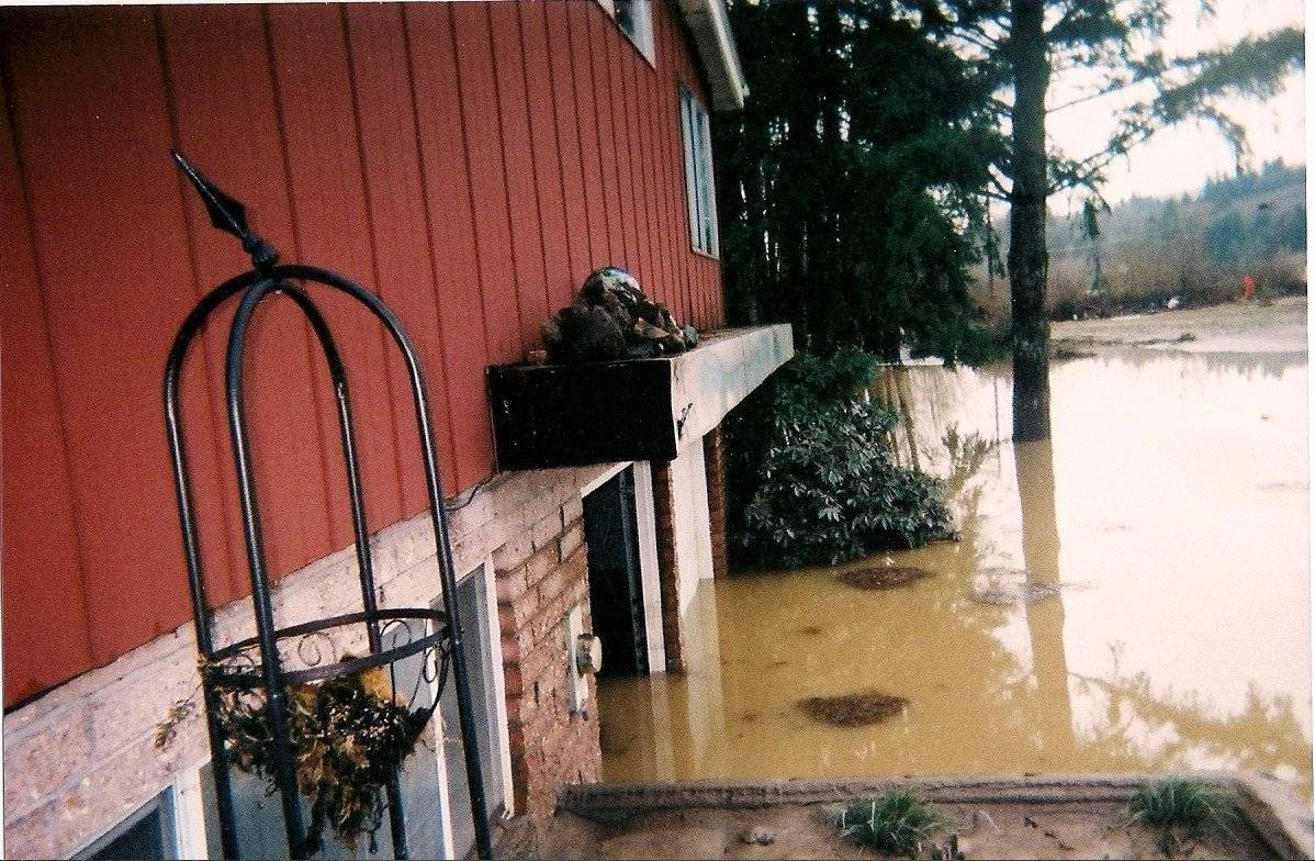 Flooding & Water Damage
