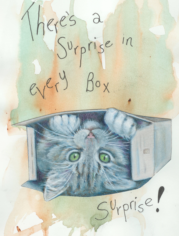 Surprise in Box