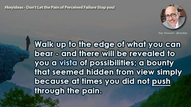 Don't Let the Pain of Perceived Failure Stop you!