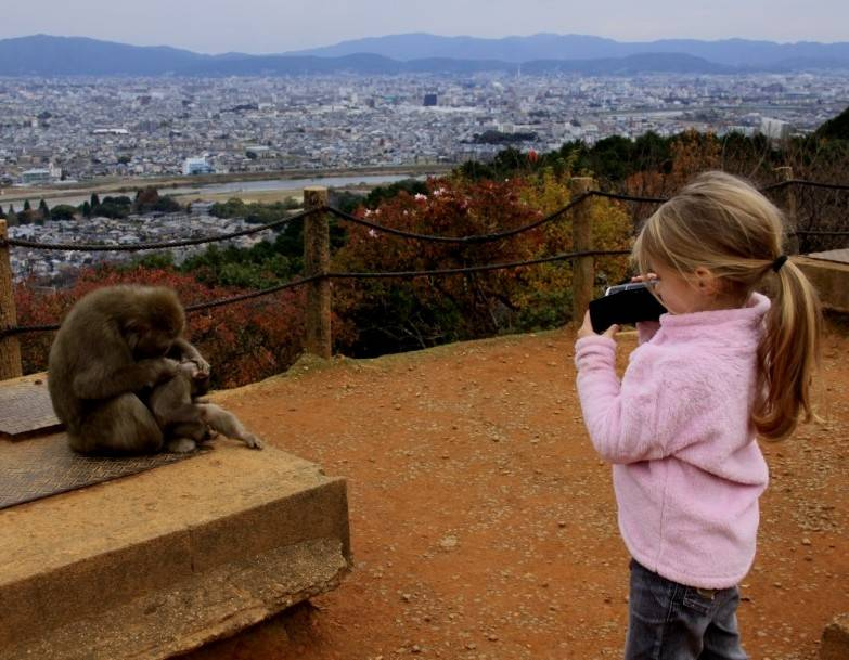 Maya, our new field assistant in the team (Arashiyama, central Japan, December 2015)
