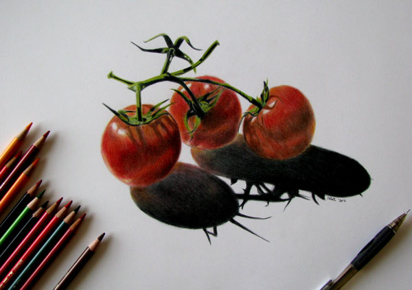 Tomatoes-Work in progress