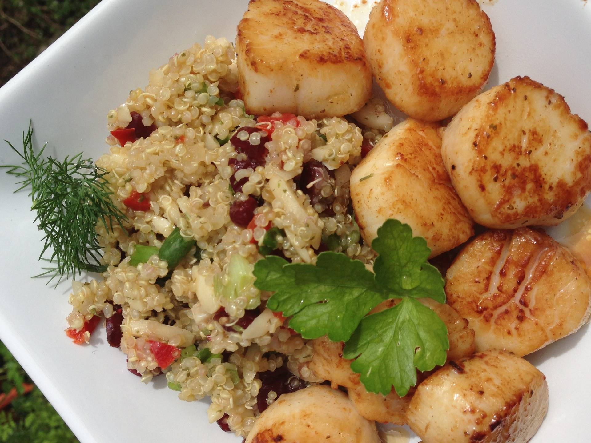 Pomegranite Quinoa with Scallops