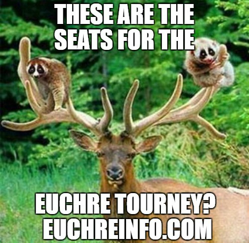 These are the seats for the Euchre tourney?