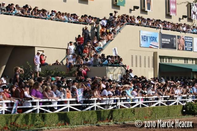 Hollywood Park Crowd