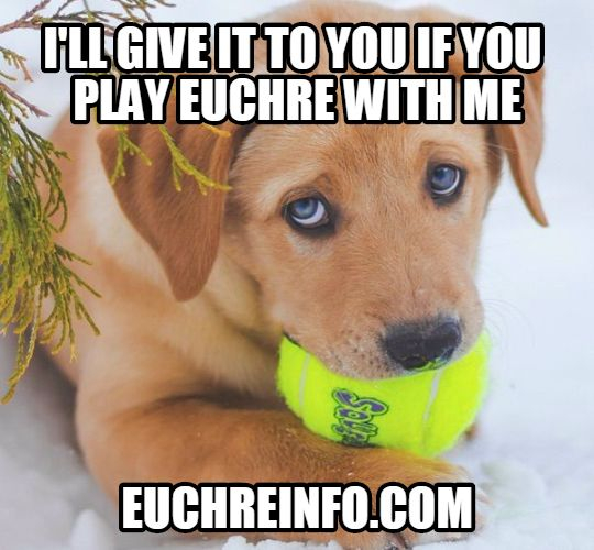 I'll give it to you if you play Euchre with me.