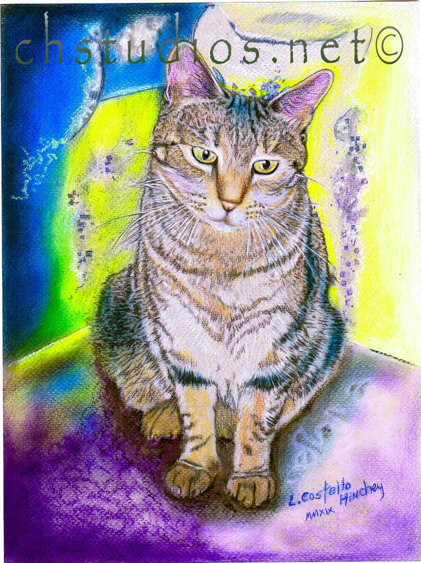 Stormy Pet Portrait Commission