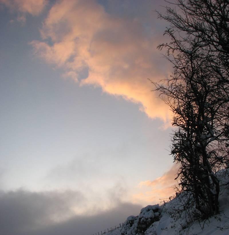 Jan 10, sunset snow 7