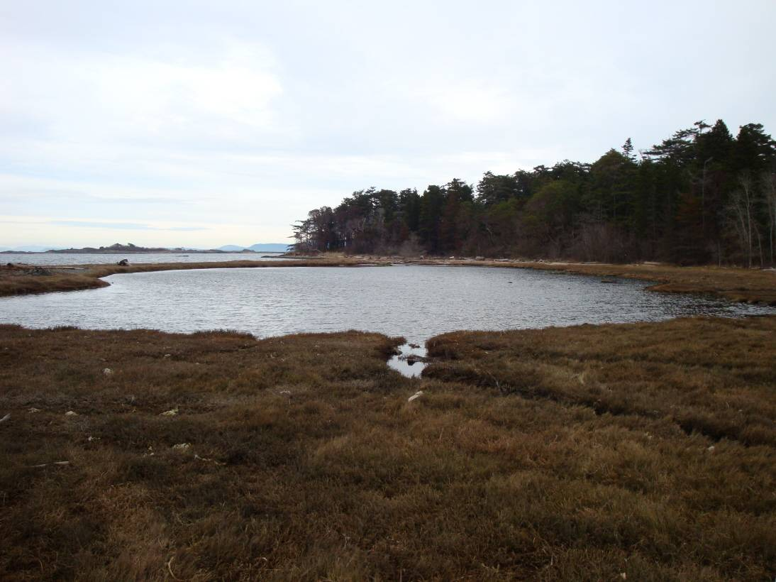 Discovery Island.