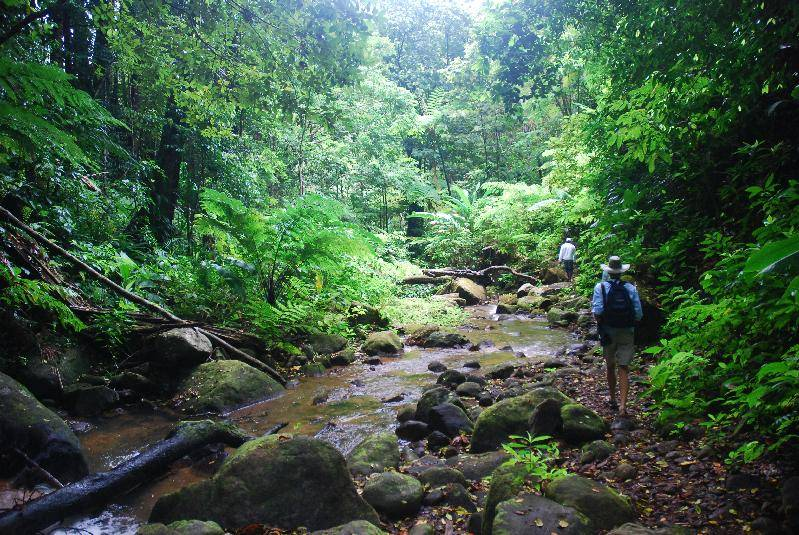 The walk to the waterfall