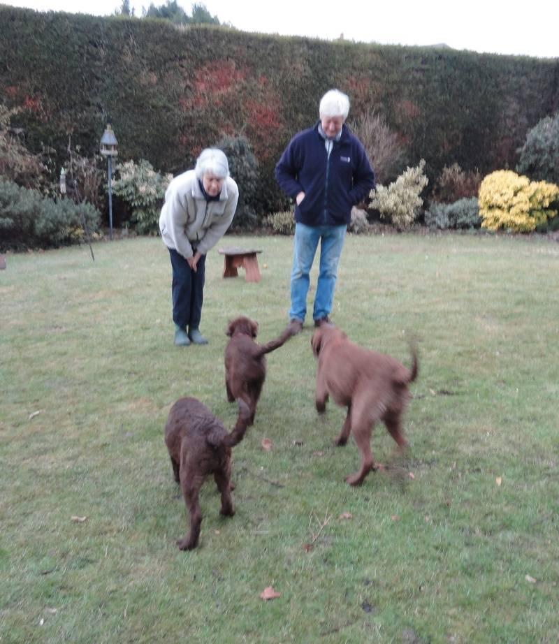 Marli, Tia and Lola 20/12/10