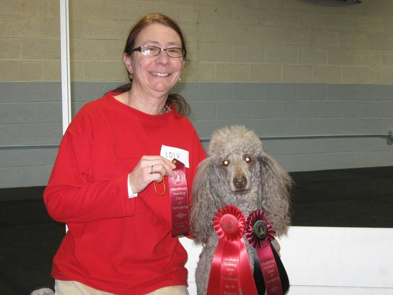 Amber winning second place in CDSP Novice and earning her CD-C title.  1/22/11.