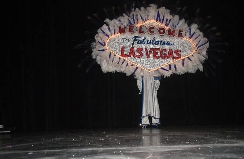 Back of Elvis Costume