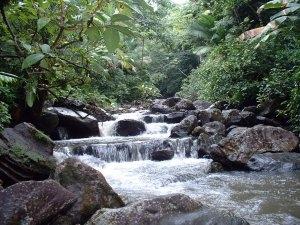 Angelito Trail