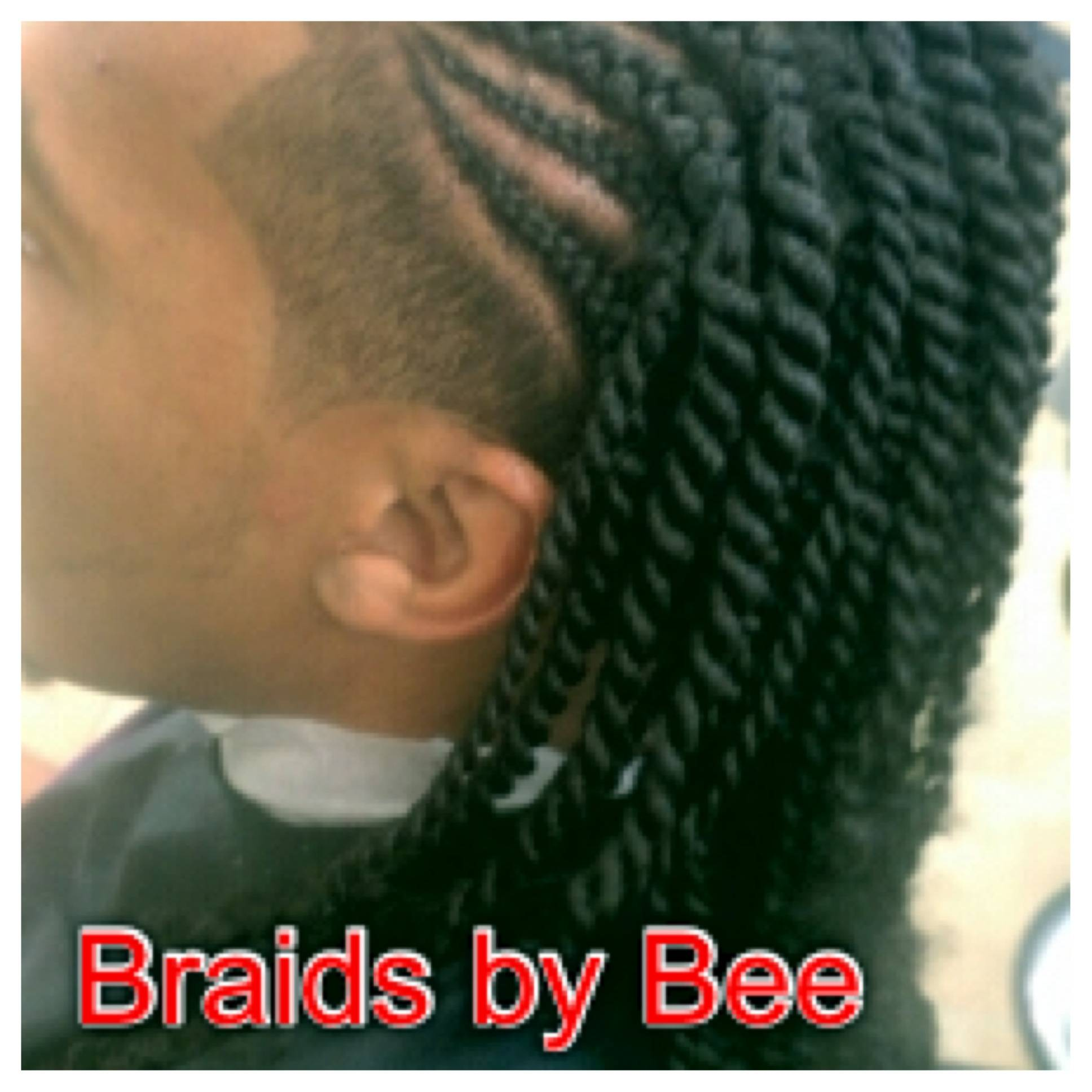 braids with rope twist in back