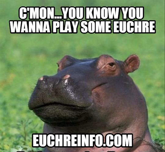 C'mon...you know you wanna play some Euchre.