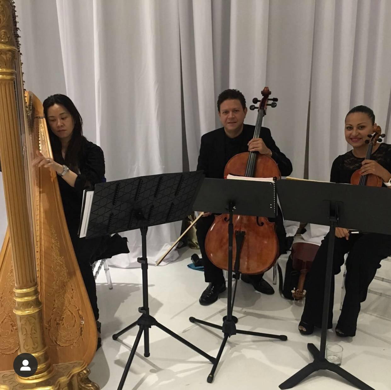 Harp, Cello, Violin Trio