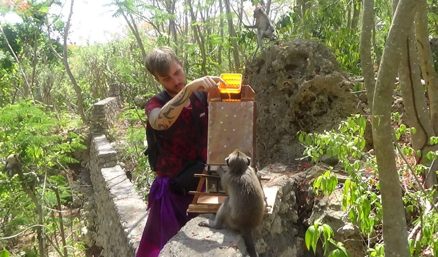 Matthew Gardiner experimentally inducing bartering in a long-tailed macaque (Uluwatu, Bali, Nov. 2019)