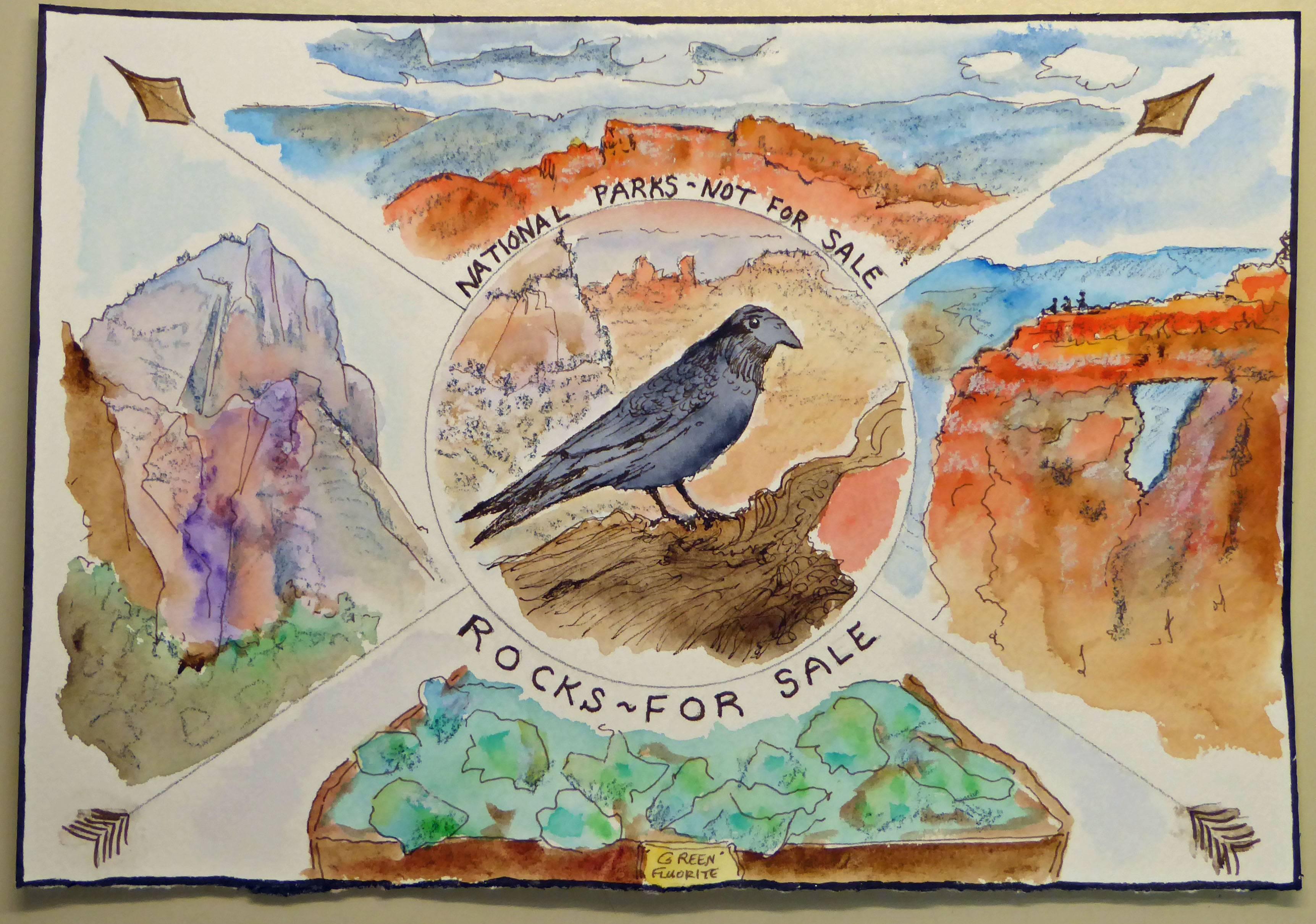 Raven's Home - Grand Canyon NP