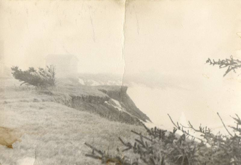 The Cove in the 1930s
