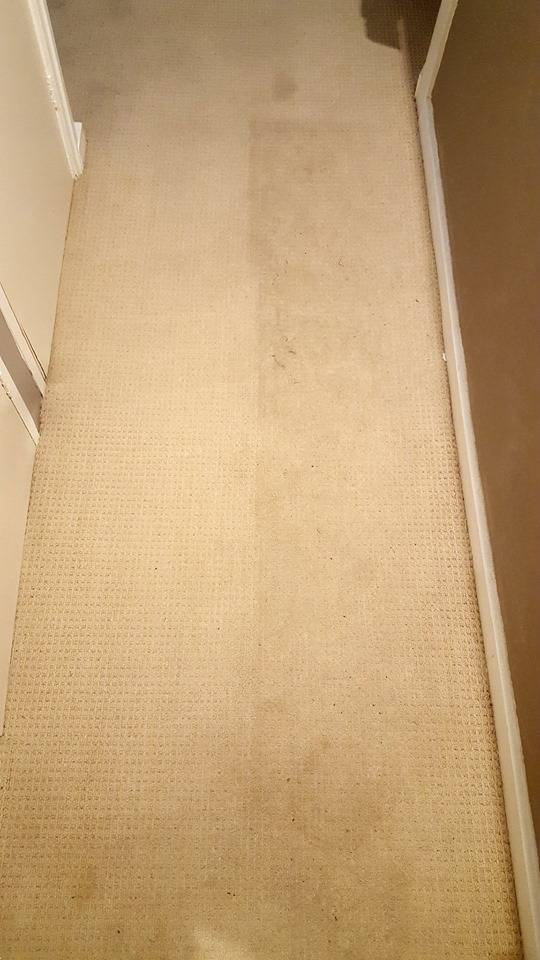 Hallway during cleaning showing brighter clean patch