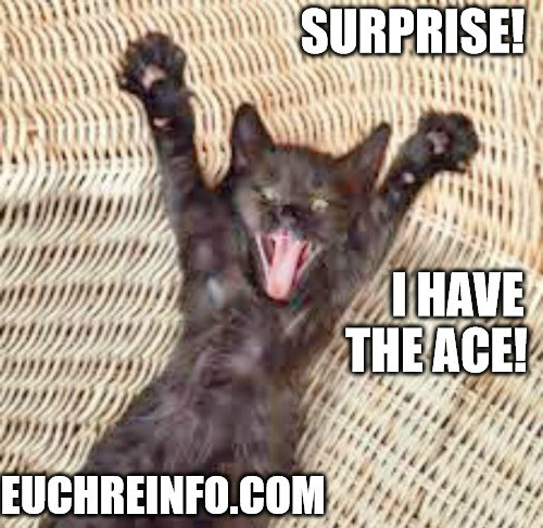 Surprise! I have the ace!