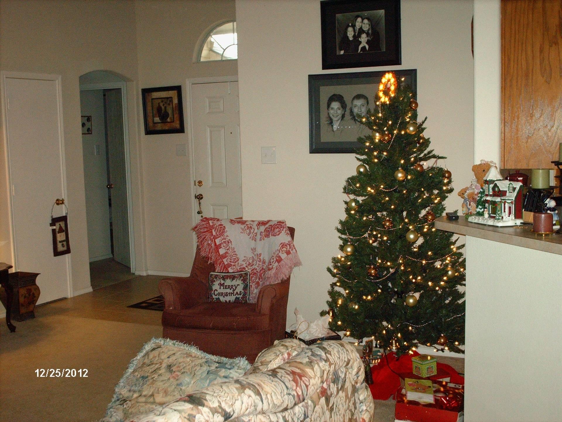 Our Humble Christmas Tree
