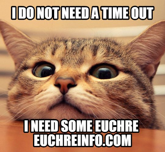 I do not need a time out. I need some Euchre.