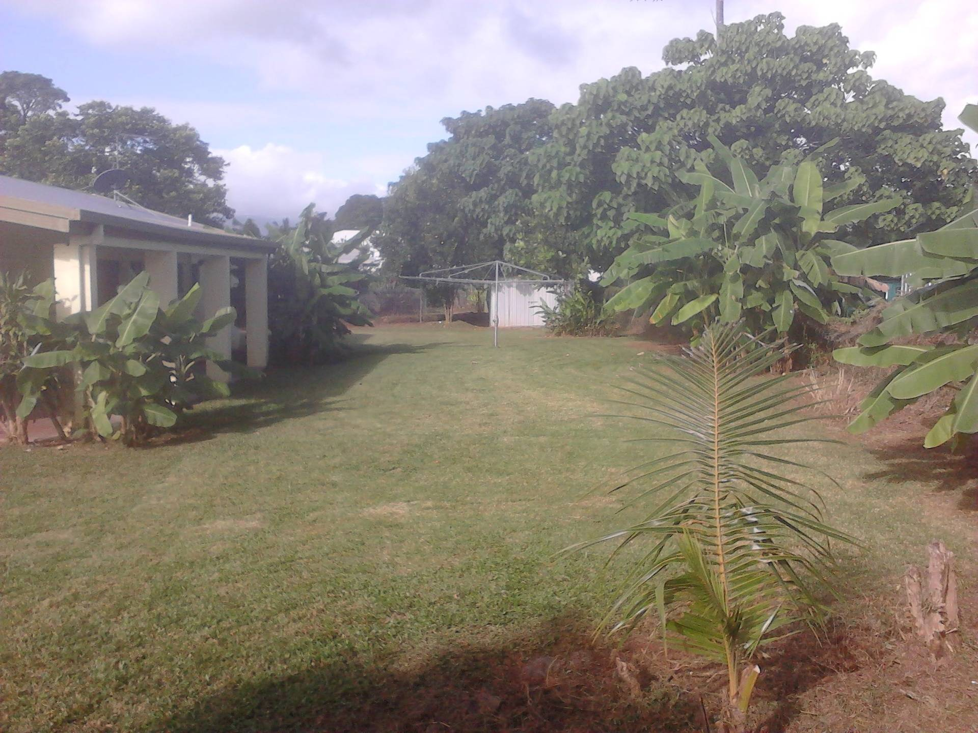 Back Yard After