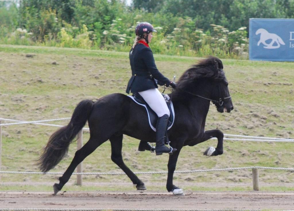 Isabelle Felsum; Viktor fra Diisa