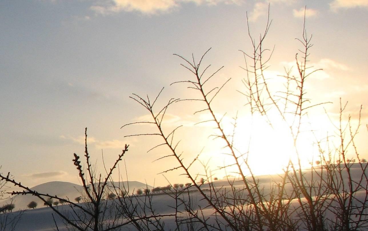 Jan 10, snow sunset snow 1