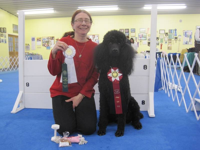 Maxwell winning fourth place in Open A and earning his CDX title.  1/30/11.