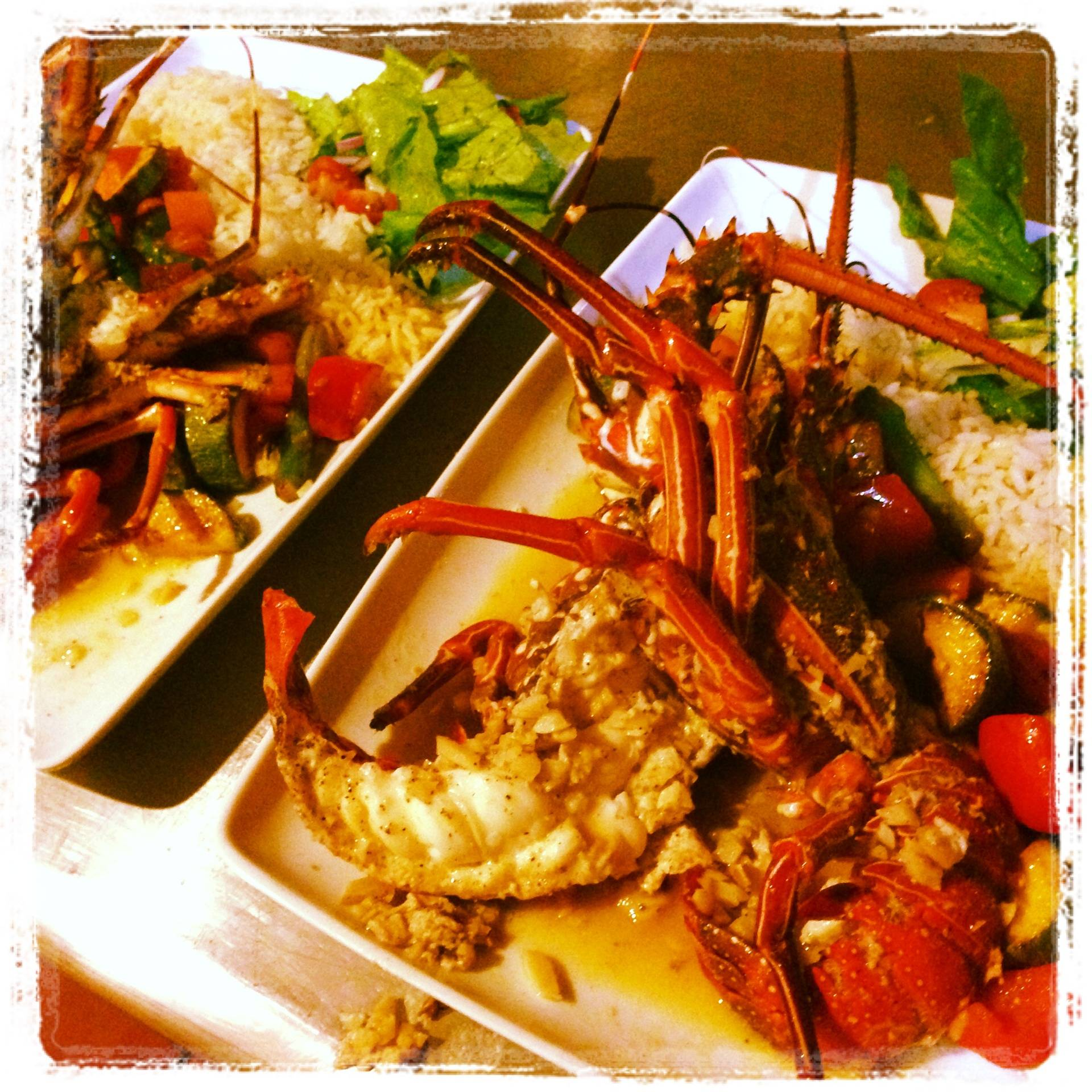 Langosta /  Fresh Lobster