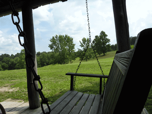View from the porch in summer