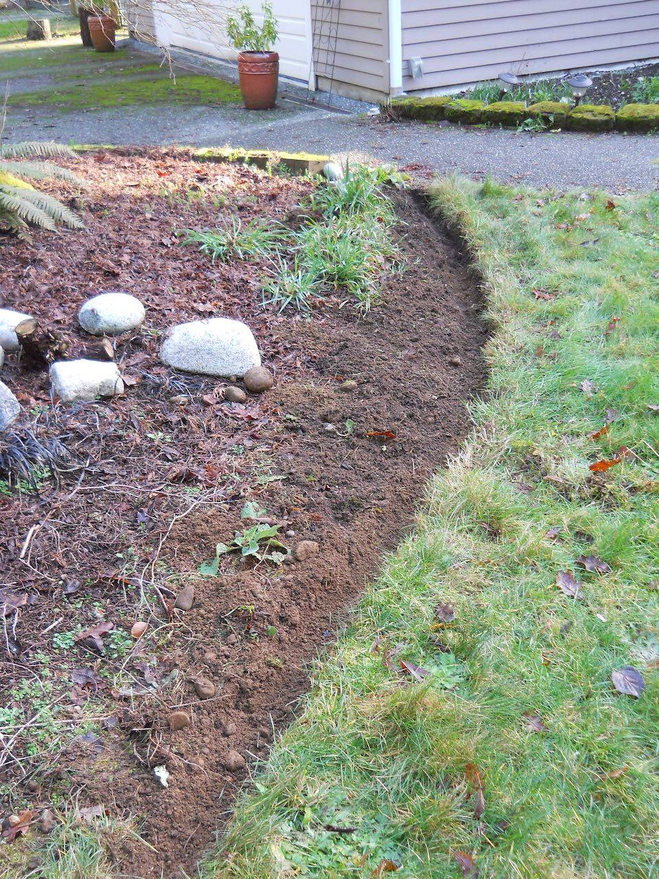 After Lawn Edging