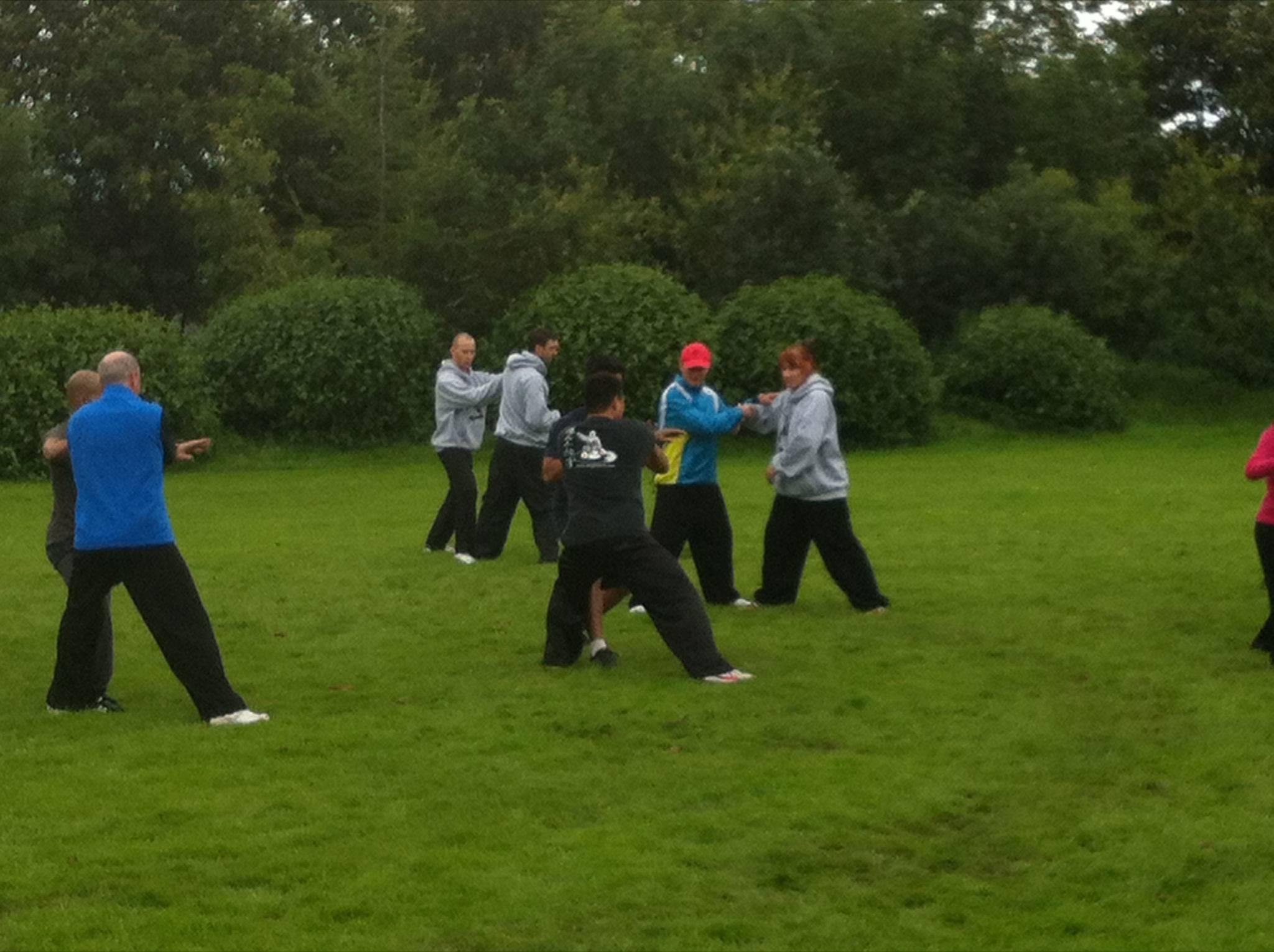 2014,  Pushing hands camp in Dublin