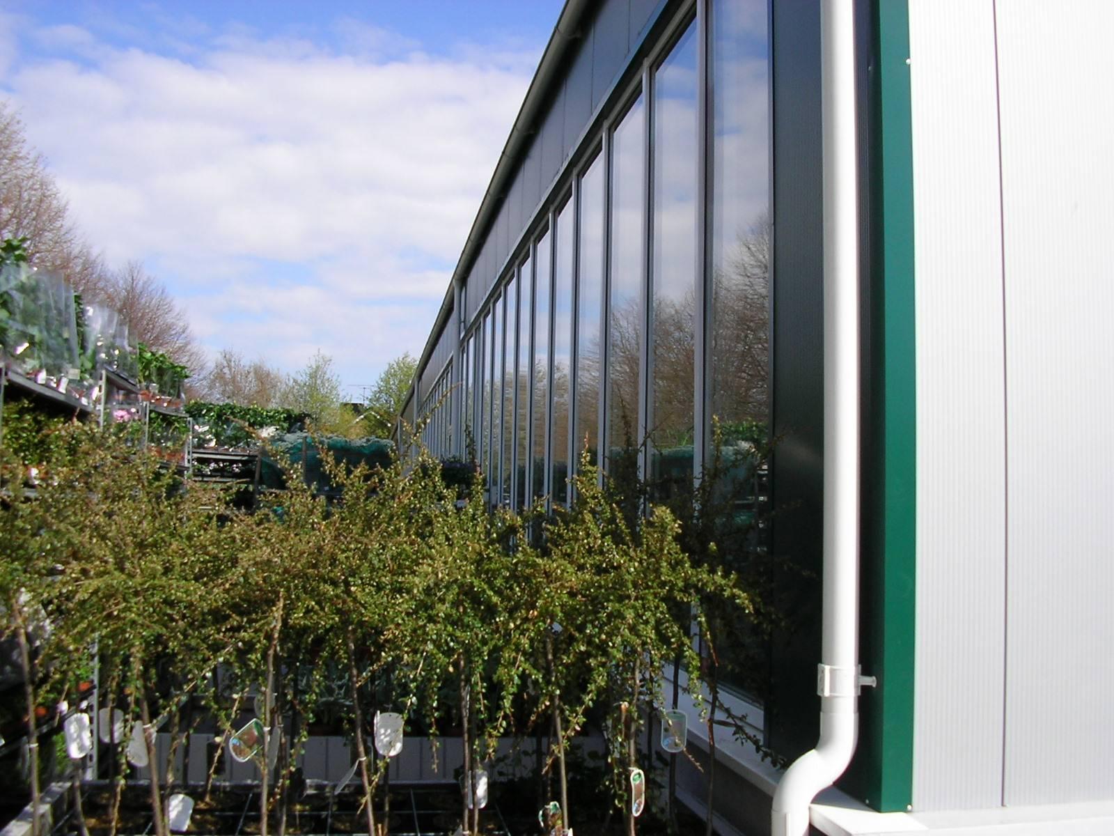 Fönsterparty