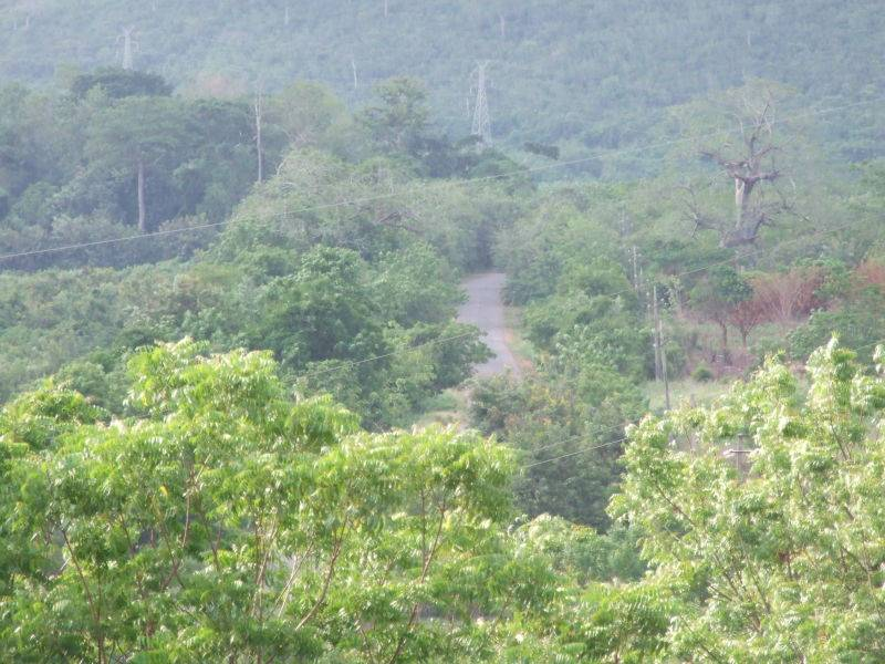 the Akwamufie road from on high