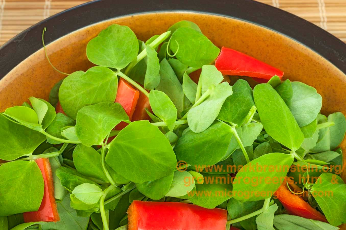 PEA shoots & red peppers - RAW