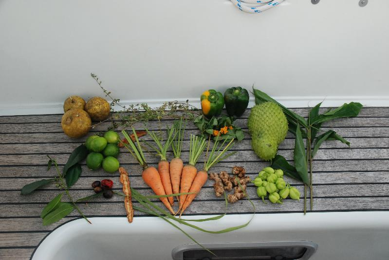 The fruit, veg, herbs and spices we collected during the trip
