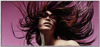 Perfect Hair International Salon Hong Kong, 346-348 Gold ShineTower, , Queens Road Central, Central, Sheung Wan, 852, Hong Kong